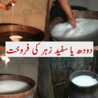 Milk or Poison