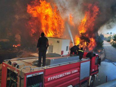 Fire Brigade