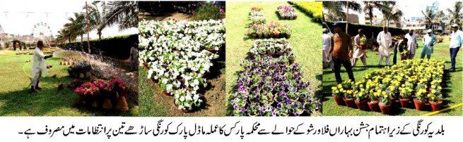 FLOWER SHOW DMC KORANGI KARACHI