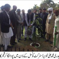Planting Compaign