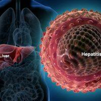Hepatitis Virus and Liver