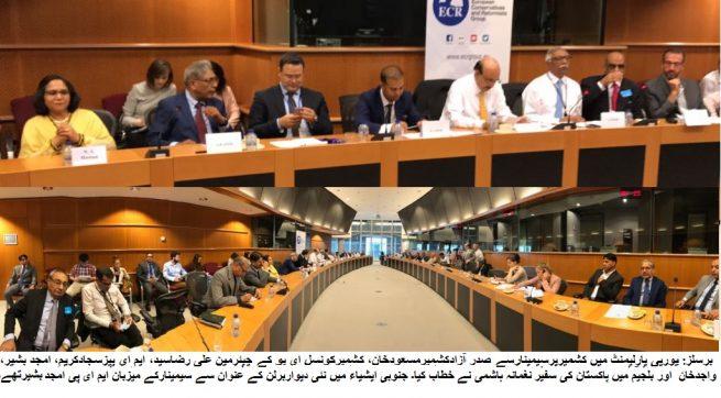 Seminar-EU parliament MEP Amjad Bashir