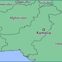 Kamalia map