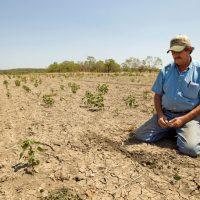 Water Crisis Farmer