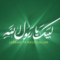 Tehreek Labbaik Ya Rasool Allah