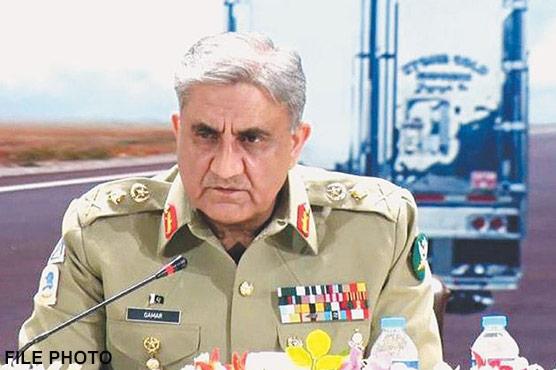 پاکستان دہشتگردی نہیں عالمی امن برآمد کر رہا ہے: آرمی چیف