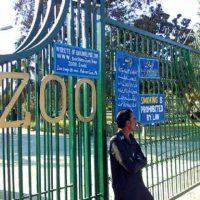 Peshawar Zoo