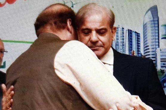 شہباز شریف مسلم لیگ ن کے قائم مقام صدر بن گئے