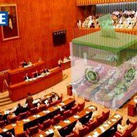 Senate Election