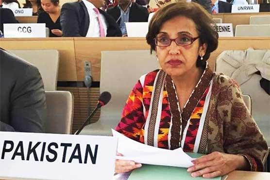 پاکستان، امریکا دہشتگردی اور القاعدہ کیخلاف کامیاب پارٹنر ہیں: تہمینہ جنجوعہ