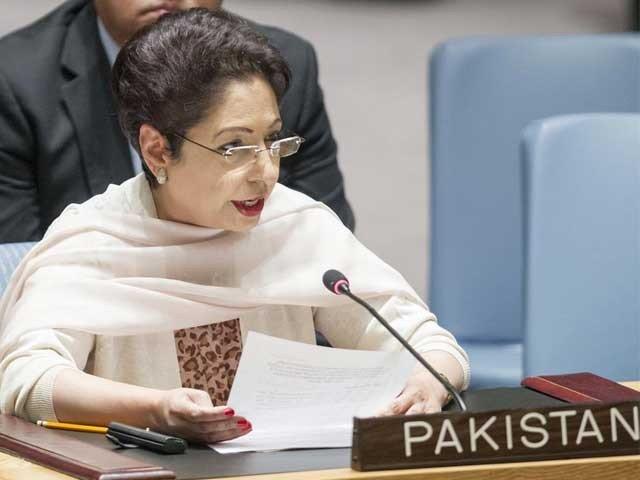 پاکستان میں جمہوریت کیلئے اب سیاسی و عسکری سطح پر مکمل اتفاق رائے ہے، ملیحہ لودھی