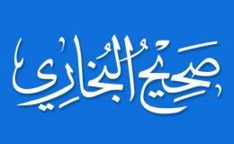 صحیح بخاری شریف  باب أَدَاءُ الْخُمُسِ مِنَ الإِيمَانِ 40  حدیث 53