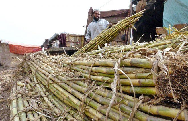 کسانوں کے لیے ضروری ازخود نوٹس