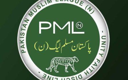 پاکستان مسلم لیگ نواز نے سیاسی پہلوان میدان میں اتار دیئے