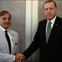 Shahbaz Sharif - Rajab Tayyip Erdogan