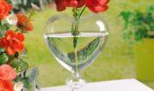 ہم اور کانچ کا گلدان