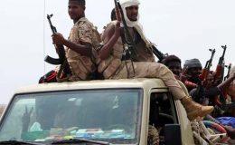 یمن کی الحدیدہ بندرگاہ پر قبضے کیلیے حوثی باغیوں اور سعودی فوجی اتحاد میں جنگ